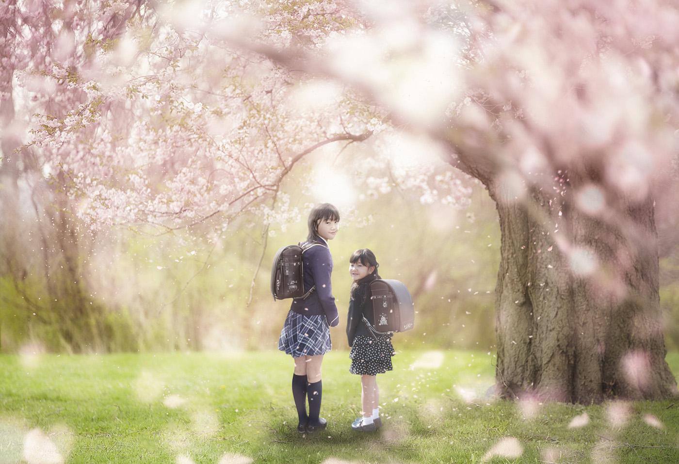 桜の木の下プレミアムフォトアート
